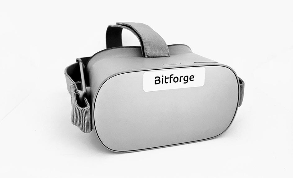 Virtual Reality-Brille Oculus Go